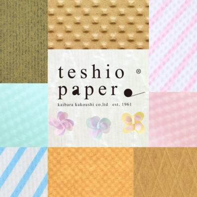 teshio paper